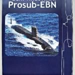 ProSub100_2799